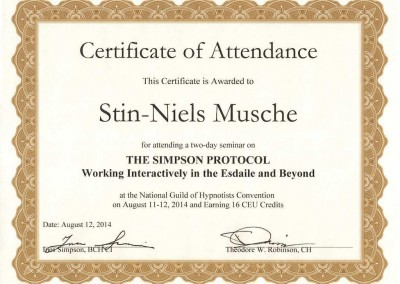 Hypnose_ohne_Worte_Simpson_Protocol_Hypnose_Hamburg_Stin-Niels_Musche